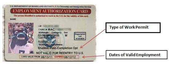 Example Employment Authorization Card (EAD)