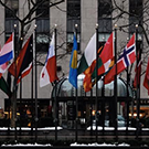group of flags outside UN