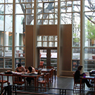 shields library interior