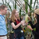 a man and two women in a greenhouse looking at corn