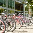 Bikes lined up outside of the International Center