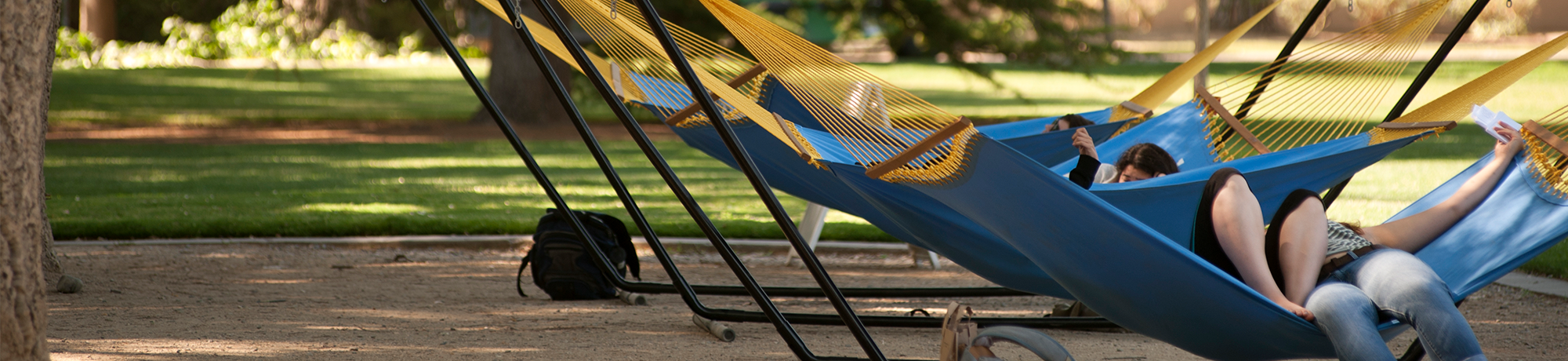 Hammocks on the Quad